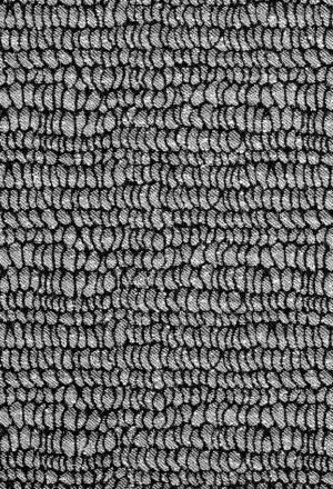 swe10-monochrome-tibor-reich