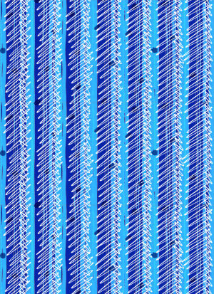STRIPE-BLUE-THUMB